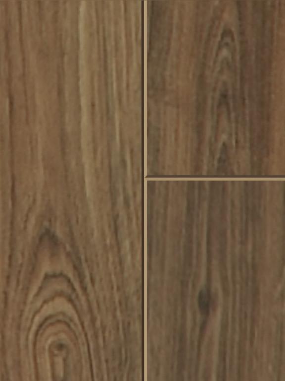 52485 0845 michigan oak pol m F 1 S DET