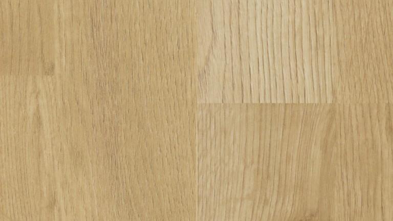 47169 6277 oak extears 2 S DET
