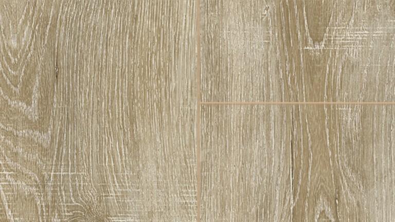 52673 3933 scarlet oak brown m F 1 S DET