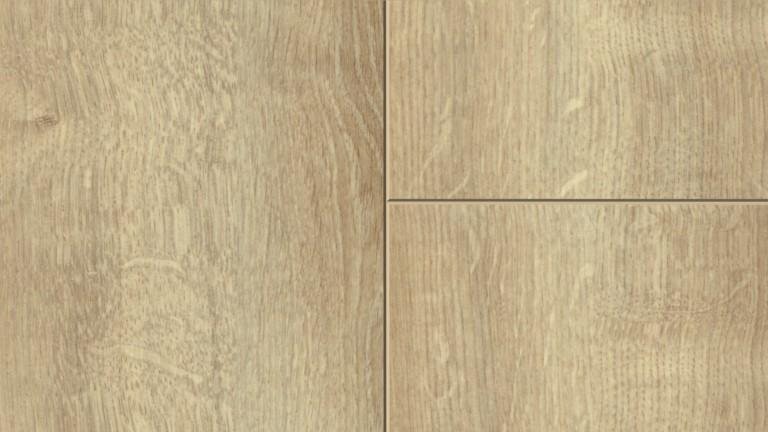 53371 0282 burlington oak m F 1 S bb DET